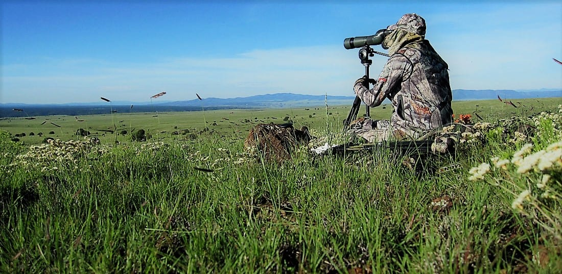 New Mexico Big Game Hunting, Elk, Sheep, Antelope, Deer